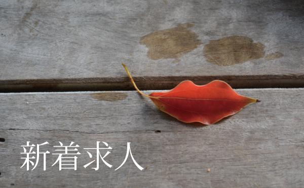 [新着]掲載求人サロン(8月)
